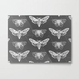 Geometric Moths inverted Metal Print