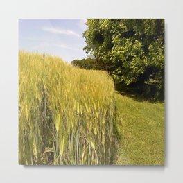 Heartland Wheat Metal Print
