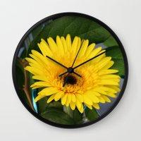 you are my sunshine Wall Clocks featuring Sunshine  by IowaShots