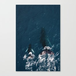 Ocean Family Whales Canvas Print