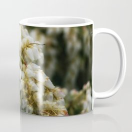 Delight DPSS170409a Coffee Mug