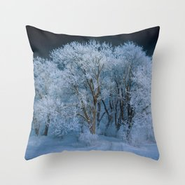 New England Winter Landscape Throw Pillow