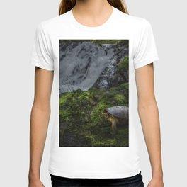 Turtle Warterfall T-shirt
