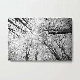 Routes To The Sky Metal Print