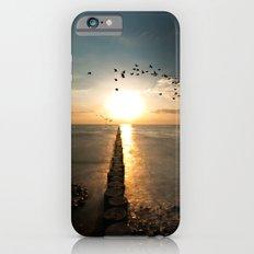 Northern coast iPhone 6s Slim Case