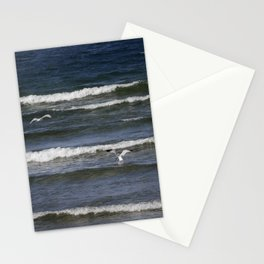 Seagull Fishing 3 Stationery Cards