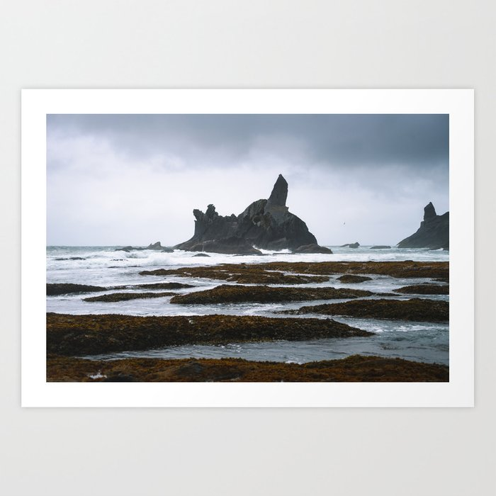 The Washington Coast Art Print