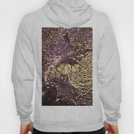 Purple leaves in melted gold Hoody