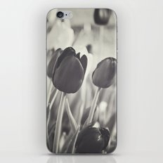 When Spring Was Here B/W iPhone & iPod Skin
