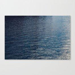 Berlin Spree water Canvas Print