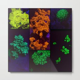 Fluorescent coral collage Metal Print