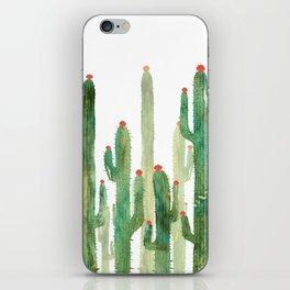 Cactus Four iPhone Skin