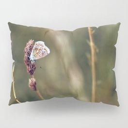 Brown Argus butterfly Pillow Sham