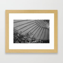 In The Shade Framed Art Print