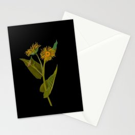 Inula Helenium, Elecampane Mary Delany Vintage Botanical Floral Collage Delicate Paper Flowers Stationery Cards