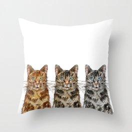Triple Tabbies Cats Throw Pillow