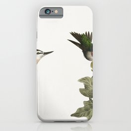87 The Red-throated Hummingbird male and female (Trochilus colubris) 88 The Red-bellied Nuthatch (Si iPhone Case