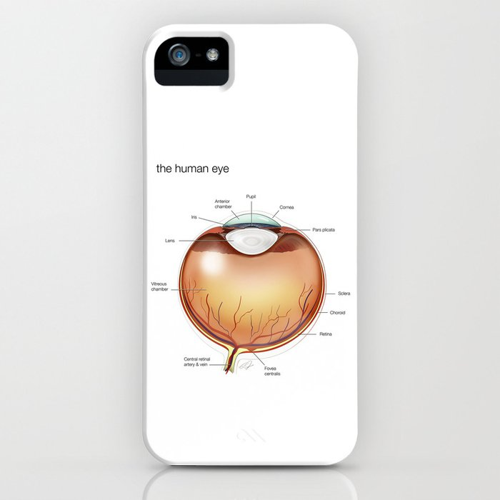 Human Eye Anatomy Illustration iPhone Case by cjonesscivi | Society6