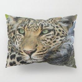 Aqua_Leopard_20180101_by_JAMColorsSpecial Pillow Sham