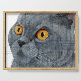 Blue British Shorthair cat Serving Tray