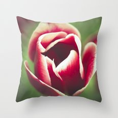 This Throw Pillow