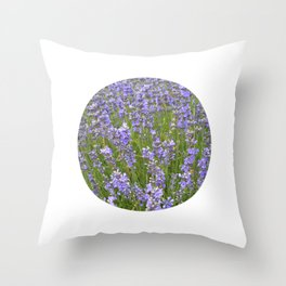 french lavender field IIX Throw Pillow