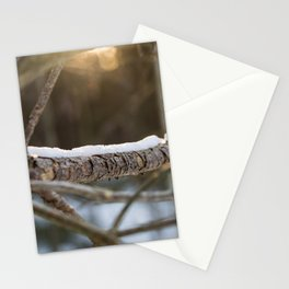 Snow in the morning sun Stationery Cards