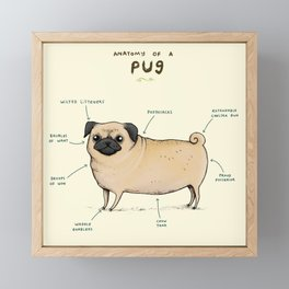 Anatomy of a Pug Framed Mini Art Print