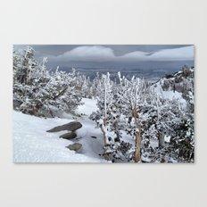 Mt Rose Canvas Print