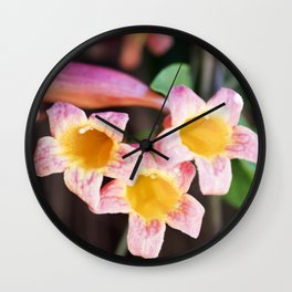 Tangerine Beauty Cross Vine - Three Plus One Wall Clock