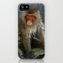 macaque monkey at jigokudani monkey park, nagano, japan iPhone Case