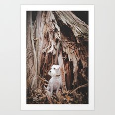 SPLIT TREE WITH DOG Art Print