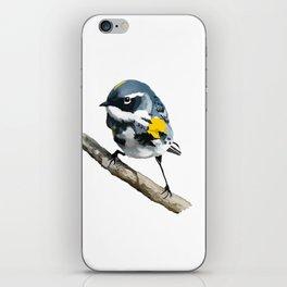 Bird on a Branch iPhone Skin
