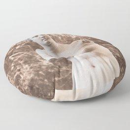 Venus de Milo Floor Pillow