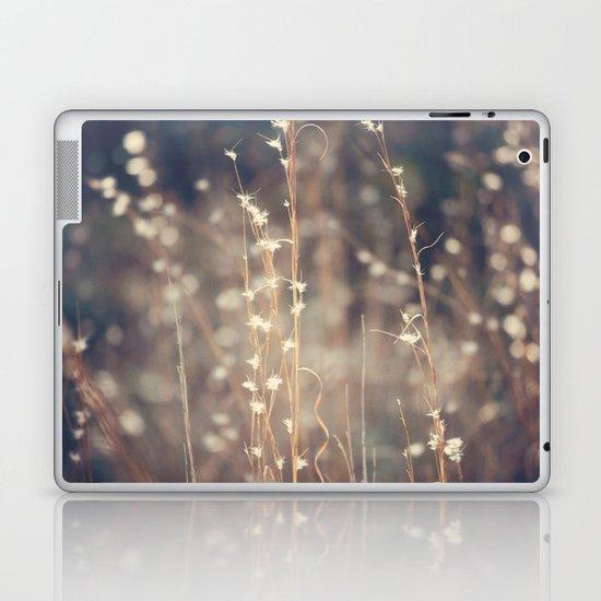 Sparkling Fairy Lights Laptop & iPad Skin