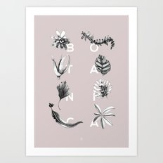 Botanica Letters | Powder Art Print