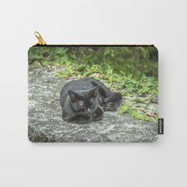 Sleeping Bagheera Carry-All Pouch