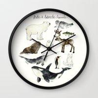 animals Wall Clocks featuring Arctic & Antarctic Animals by Amy Hamilton