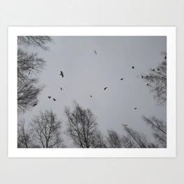 Crow Hour Art Print