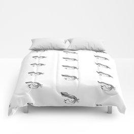 Croquis de calmar mort Comforters