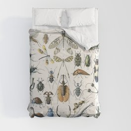 Adolphe Millot- Vintage Insect Print Comforters