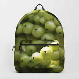 Cellulose Backpack