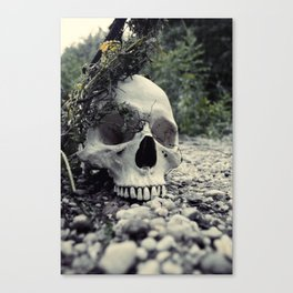 Skulled Canvas Print