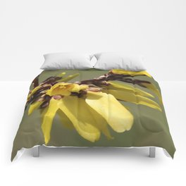 See Me Now Forsythia Comforters