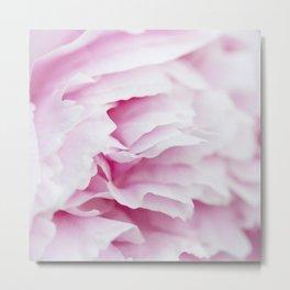 Pink Flower Petals Metal Print
