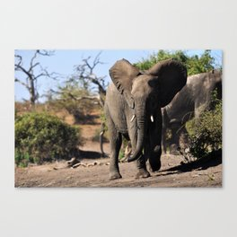 Charge. Canvas Print