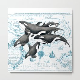 Orca Whales Family Blue Vintage Map Metal Print