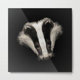 badger, animal photo Metal Print
