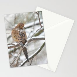 Winter Dove Stationery Cards