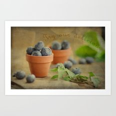 Try our delicious Blueberries Art Print